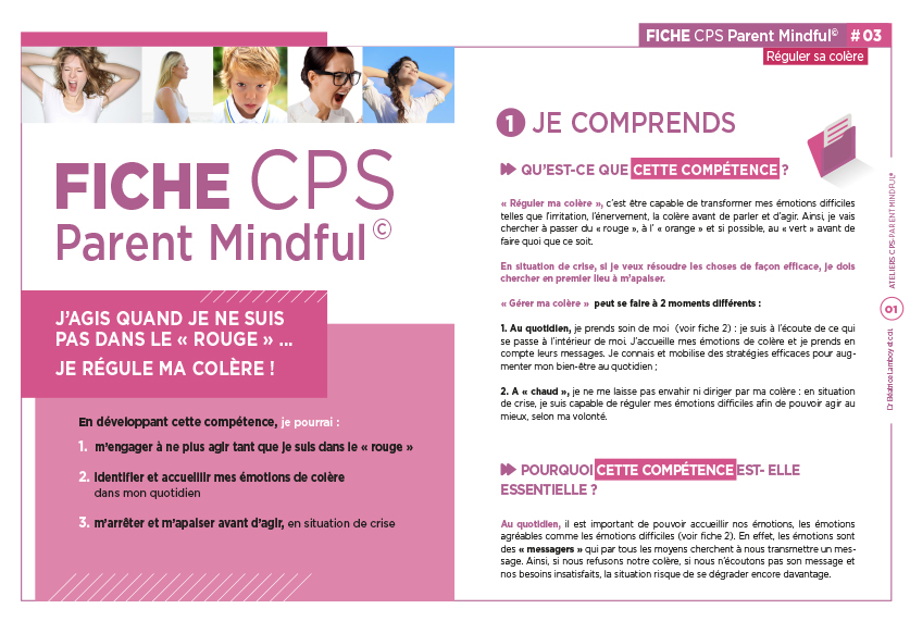 AFEPS_F03-CPS-mindful-regule-ma-colere